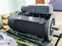 Customized IC 411 squirrel cage induction motor