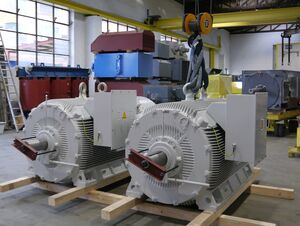 Two medium voltage dual speed motors for cement plant