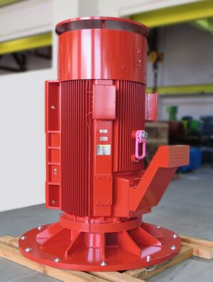 Special squirrel cage motor for pump drive application